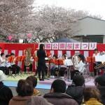 岩脇公園桜まつり6