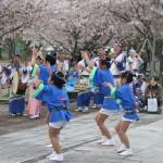 岩脇公園桜まつり3