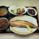 発芽発酵玄米定食